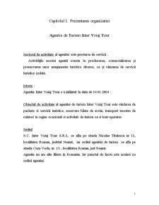 Practica la o Agentie de Turism - Pagina 1