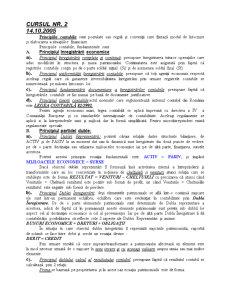 Contabilitatea Financiară - Pagina 3