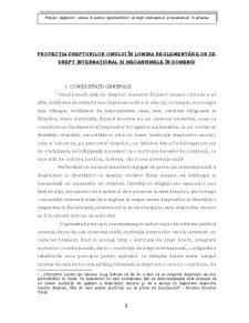 Protecția Drepturilor Omului - Pagina 1