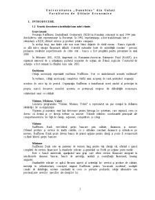 Casa de Schimb Valutar - Raiffeisen Roman - Access - Pagina 3
