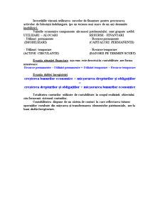 Sinteze Contabilitate - Pagina 2