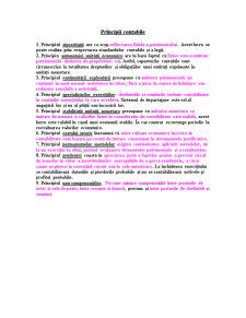Sinteze Contabilitate - Pagina 3