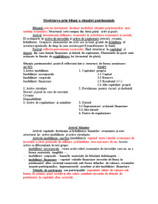 Sinteze Contabilitate - Pagina 4