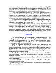 Tehnologia și Controlul Calității în Industria Panificației - Pagina 4