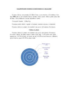 Valorificare Chimica si Biochimica a Celulozei - Pagina 1