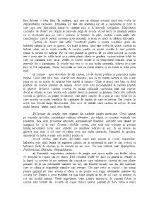 Ingrijirea Plantelor - Pagina 2