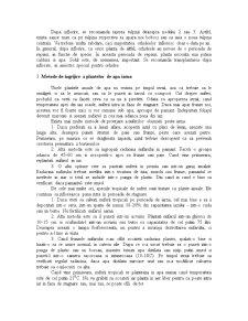 Ingrijirea Plantelor - Pagina 5