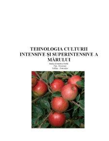 Tehnologia Culturii Intensive și Superintensive a Mărului - Pagina 1
