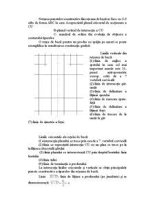 Bazele Tehnologiei Confectiilor - Pagina 4