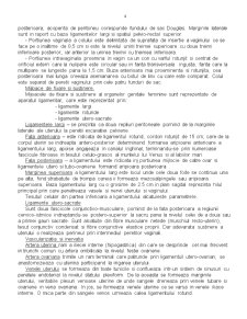 Anatomia Aparatului Genital - Pagina 4