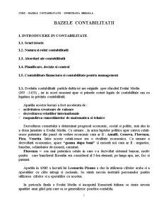 Bazele Contabilitatii - Pagina 1