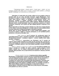 Nucul - Pagina 1