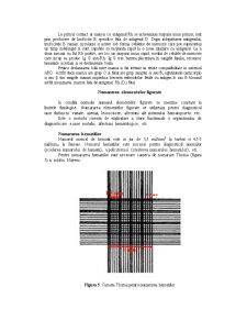 Grupe Sangvine - Pagina 5