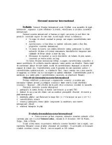 Sistemul Monetar International - Pagina 1
