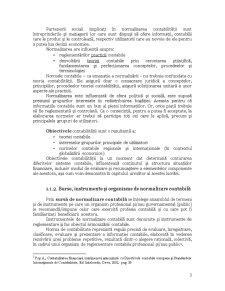 Procesul de Convergență Contabilă - Pagina 3