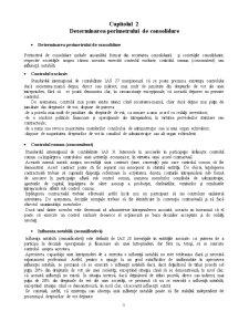 Sisteme Contabile Comparate - Pagina 3