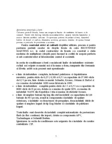 Tennologia de Obtinere a Berii - Pagina 5