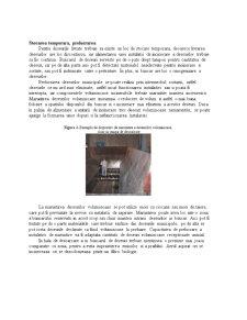 Metode si Tehnologie de Gestionare a Deseurilor - Pagina 5