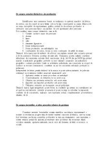 Dreptul Concurentei - Curs 3 - Pagina 4