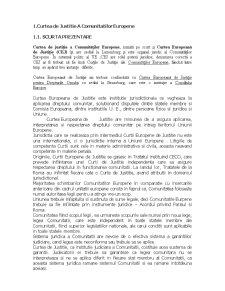 Actiunile Judiciare Specifice Dreptului Comunitar Aflate in Competenta de Jurisdictie a Tribunalului de Prima Instanta si a Curtii de Justitie a Comunitatilor Europene - Pagina 4