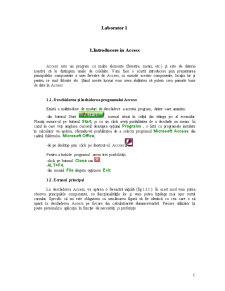Microsoft Access - Pagina 1