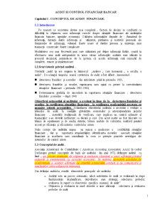 Audit Financiar Bancar - Pagina 1