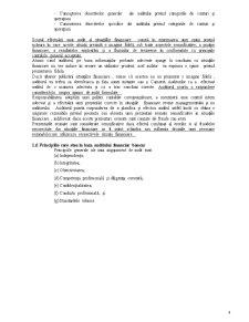 Audit Financiar Bancar - Pagina 4