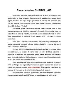 Rasa de Ovine - Charollais - Pagina 1
