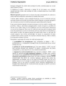 Creditare Bancara - Pagina 3