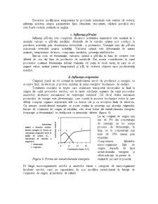 Factorii care Influențează Viteza Proceselor de Fermentație - Pagina 4
