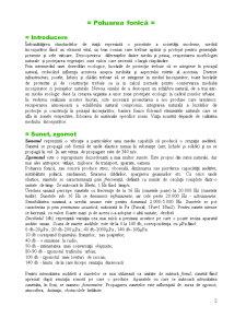 Economia Protecției Mediului - Poluarea Fonică - Pagina 3