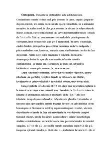 Trichineloza-Zoonoza - Pagina 2