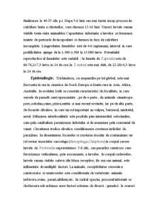 Trichineloza-Zoonoza - Pagina 3