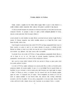 Aranjamente Florale Occidentale Clasice - Pagina 2