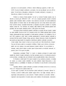 Plante Medicinale și Aromatice - Pagina 2