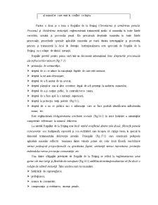 Tratamentul Socio-juridic al Copiilor Care au Comis Infracțiuni - Pagina 3