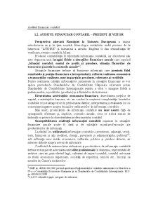 Audit Contabil și Financiar - Pagina 3