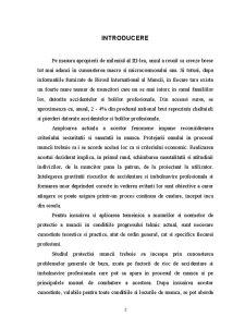 Ergonomie si Protectia Muncii - Pagina 3