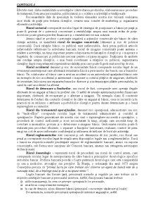 Riscurile Bancare - Pagina 4
