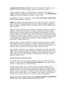 Microprocesorul - Pagina 3