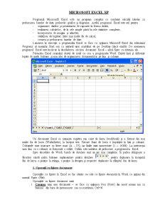 Curs Excel XP - Pagina 1