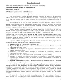 Proceduri de Audit - Dovezi - Pagina 1