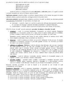 Proceduri de Audit - Dovezi - Pagina 3