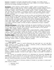 Proceduri de Audit - Dovezi - Pagina 4