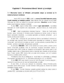 Proiect Practica BRD-GSG - Pagina 3