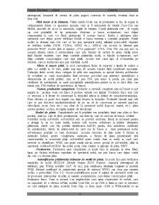 Comerțul Electronic Mobil mComert - Pagina 4