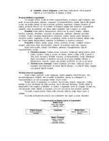 Organizatia si Mediu Extern - Pagina 4