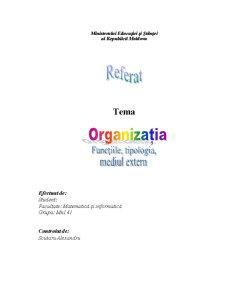 Organizatia si Mediu Extern - Pagina 5