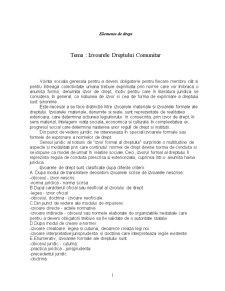 Izvoarele Dreptului Comunitar - Pagina 1