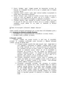 Cadrul Contabil Conceptual - Situatiile Financiare - Pagina 2